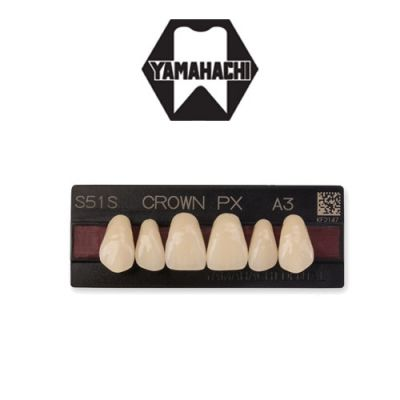 Yamahachi Crown PX Anterior Artificial Teeth
