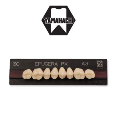 Yamahachi Efucera PX Posterior Artificial Teeth